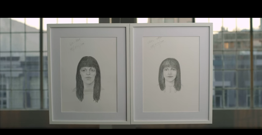 Dove Real Beauty Sketches